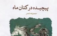 پیچیده در کتان ماه  / حمید نعمت الهی