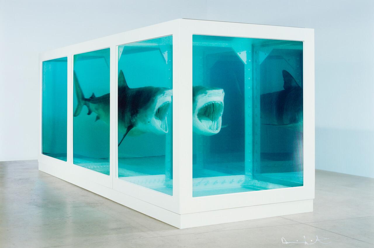 damien.hirst.shark