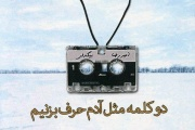 دو کلمه مثل آدم حرف بزنیم/ امیر رضا بیگدلی